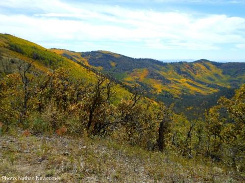McKnight Canyon